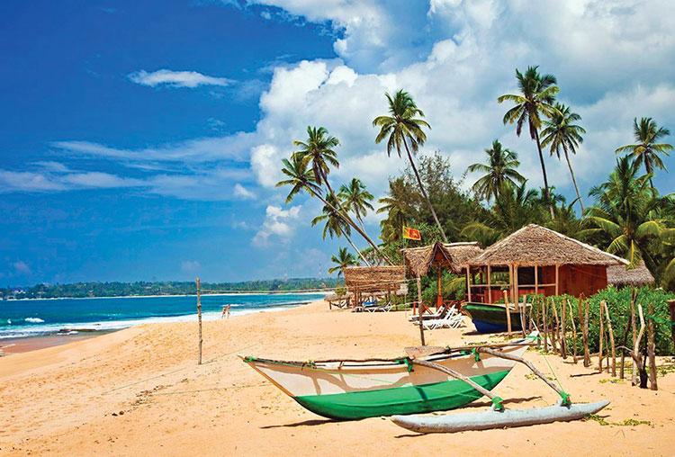 Сколько лететь до Шри-Ланки из Москвы прямым рейсом