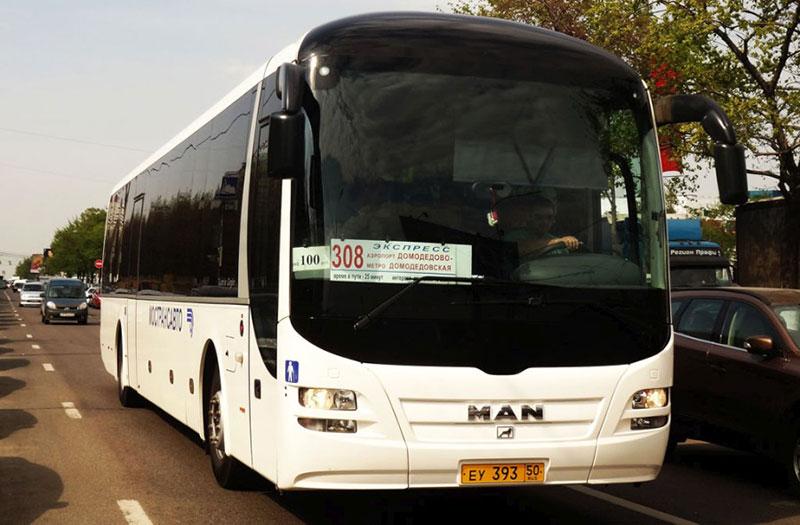 Автобус №308 до аэропорта Домодедово