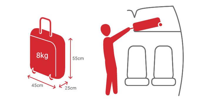 Размеры и вес ручной клади в авиакомпании Czech Airlines